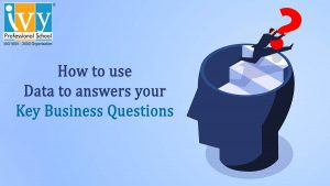 Key Business Questions